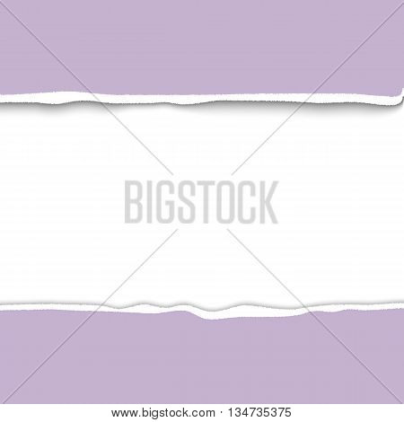 Border of torn paper, realistic vector illustration. Torn paper with ripped edges, template for infographica and web. Ripped paper frame