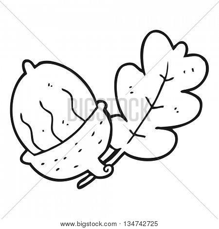 freehand drawn black and white cartoon acorn