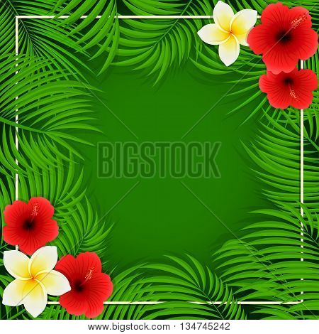 Summer background with palm leaves and Hawaiian flowers, frangipani and hibiscus with palm leaves on green background, illustration.