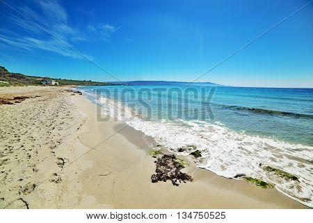 sandy shore in Le Bombarde beach Sardinia