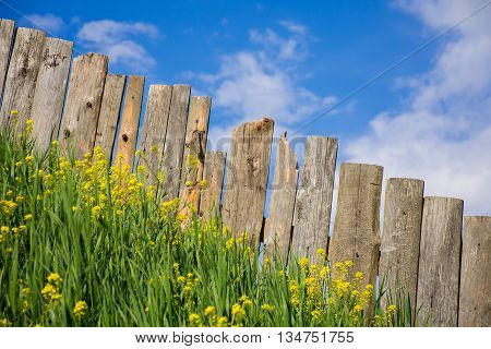 Pastoral views of the palisade. Palisade fence is a village full of flowers. Rural life outside the city. Landscape on bright flowers and a wooden fence on a ranch.