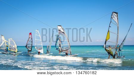Windsurfing sails on the blue sea riding the wind