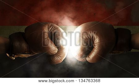 Boxing Gloves With The Flag Of Croatia