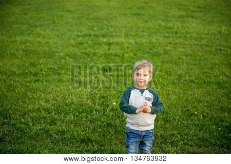 kid walks in the park. In summer, a little boy is walking on the green grass in the summer. Cheerful kid blondingulyaet in summer park.
