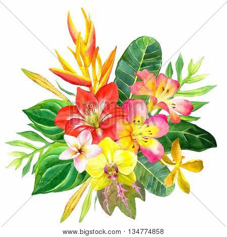 Beautiful bouquet with tropical flowers and plants on white background. Composition with amaryllis palm leaves plumeria strelitzia and orchid.