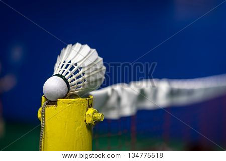 Shuttlecock On The Net With Blurred Background, Shallow Dof