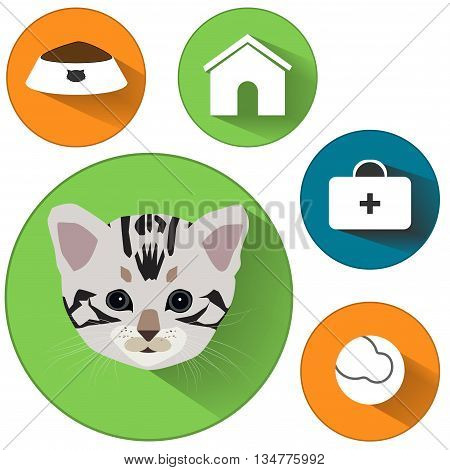 Cat icons. Cat food signs. Home pets signs. Home pets signs. Veterinary pets signs. Circles flat buttons with shadow. Vector illustration. EPS10