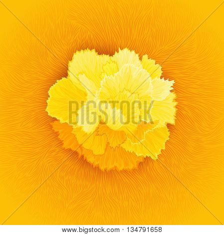 Juicy burgeon blossom of carnation.textured flower petals fibers. Vector design element