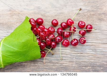 bunch of red ripe berries cherries with tails in the green leaves of burdock scattered on an old wooden board