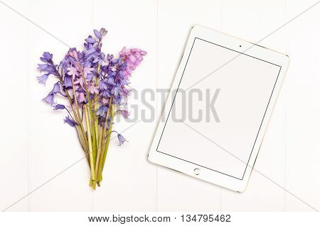 Styled stock photography bunch of bluebells on a white wooden floorboard background. Tablet device to the side for you to overlay any business promotion instagram message headline