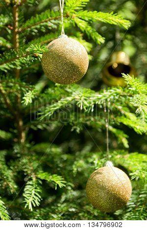 Golden Christmas tree balls on the green Christmas tree