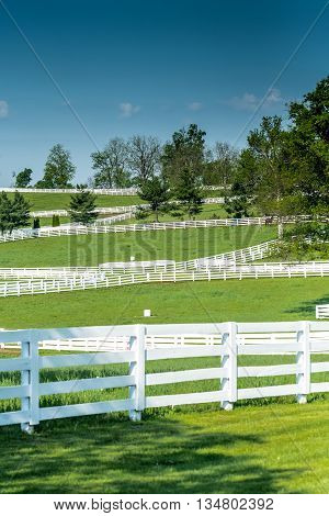 Horse Farm Fences on a Clear Day weave across the Kentucky hillside
