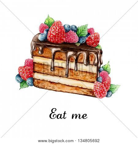Watercolor illustration of hand painted chocolate cake with summer berries
