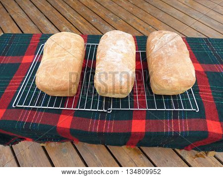 Three loaves of fresh bread just out oven.