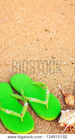 Womens sandals at the beach on the shoreline with sea shells