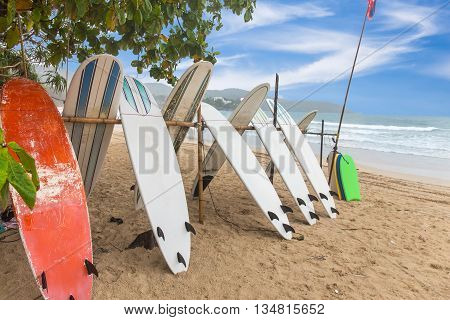 Surf Boards on sand beach at kata beach Phuket Thailand