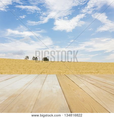Blank Area Or Space Table Top On Wide Grass Field At Hill With Puffy Clouds Blue Sky In Spring Or Su