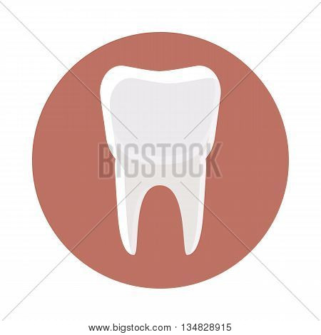 White tooth icon in cartoon style on a white background