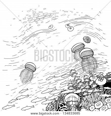 Graphic coral reef  jellyfish floating to the surface of the water. Ocean vector card isolated on white background. Coloring book page design