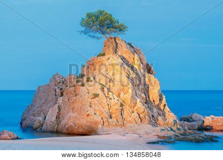 Sea, rocks and trees at sunset in the Bay of Tossa de Mar, Costa Brava, Catalonia, Spain.