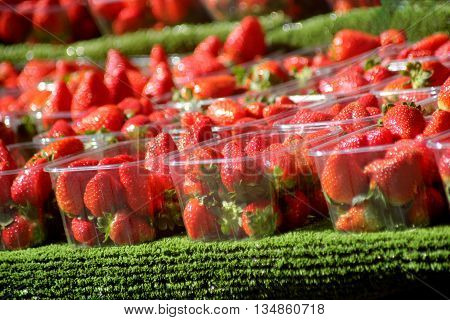 Abstract Colourfull Strawberries Market Stall Scene Dorset England