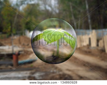 A transparent sphere with a young plant on a background of a construction site and forest. The concept - nature protection environment. Save the forest