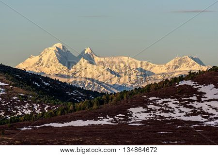 Scenic view with the beautiful mountain peaks with snow and glaciers slopes covered with snow and sparse brown vegetation and cedar trees at dawn
