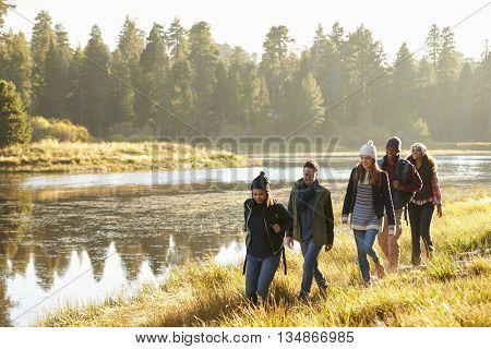 Five friends walking in a row in countryside beside a lake