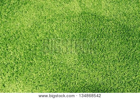 Fragment of material background a green carpet