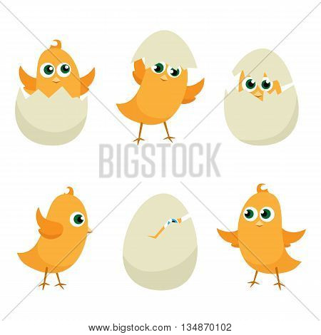 Easter eggs chicks set. Easter background vector eps 10