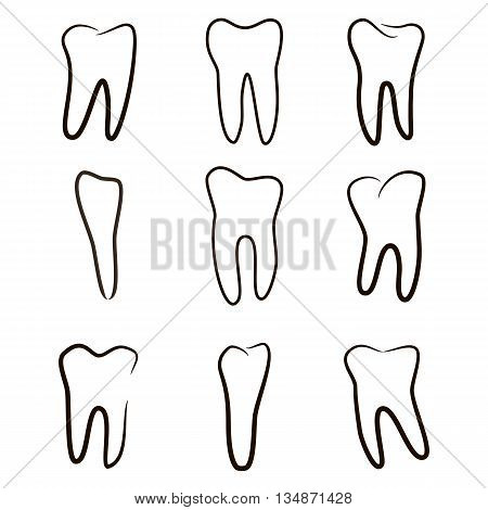 Human teeth icons set isolated on white background for dental medicine clinic. Linear dentist logo. Vector EPS10