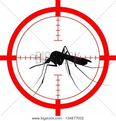 Target On Mosquito