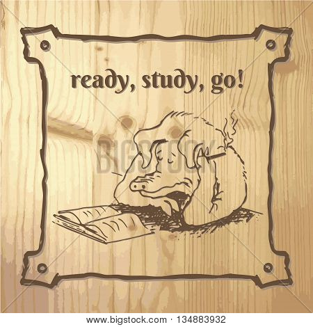 Pig ready for study book. Smoking pig on wood background.
