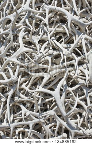 Intertwined elk antler horn sculpture background random curvy twisted texture pattern of white bone color animal shed vertical