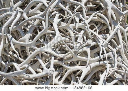 Intertwined elk antler horn sculpture background random curvy twisted texture pattern of white bone color animal shed