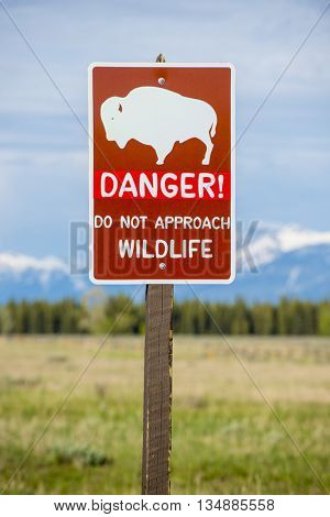 Sign warning danger of wildlife bison buffalo approaching roadside along pasture and mountain view landscape scenic tetons national park