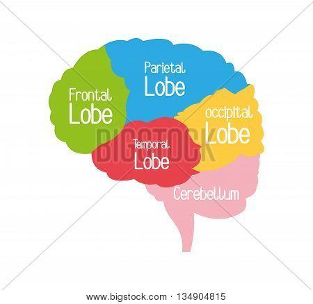Brain concept with icon design, vector illustration 10 eps graphic.