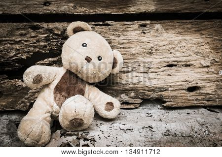 Cute teddy bear abandoned near old woodenvintage