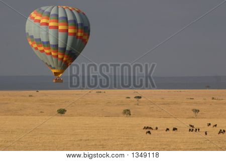 Ballooning The Masai Mara