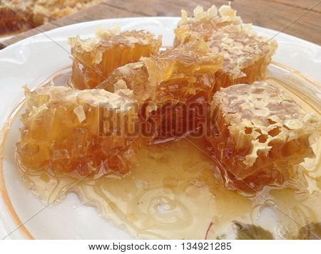 Organic Honey with comb on a plate close-up
