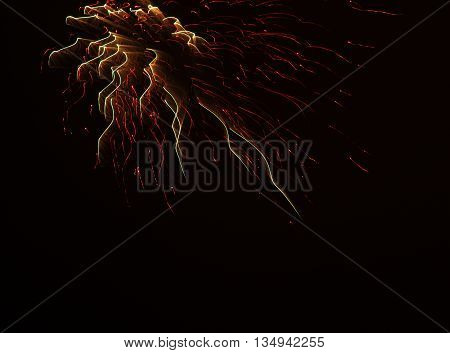 line abstract light of firework black background