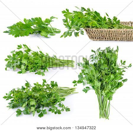 set of Parsley isolated on white backgroundpice; aromatic; fragrant; natural