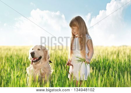 Little girl and big kind dog on the meadow