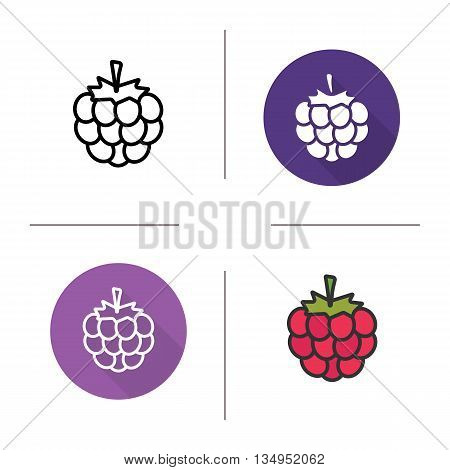 Raspberry icon. Flat design, linear and color styles. Blackberry isolated vector illustrations