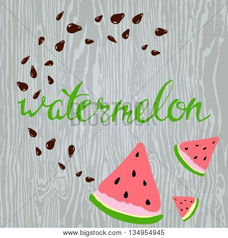 Vector watermelon and seeds. Hand draw leterring.
