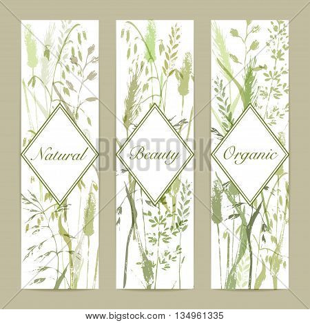 Vector vertical design template. Meadow grass silhouettes in green colors. Organic product bio cosmeticks and eco nature background.
