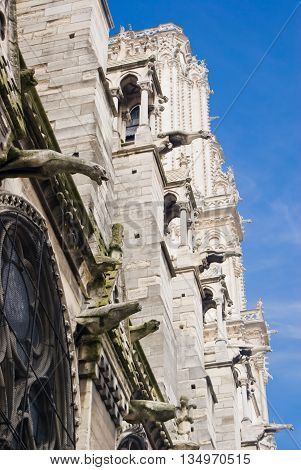 Side facade's details of Notre-Dame of Paris Cathedral