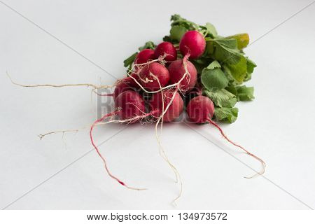 Isotaed Fresh Red Radishes With Greenery