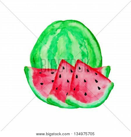 Hand drawn watercolor painting on white background. Watermelon background. Watercolor watermelon.