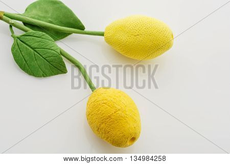 Beautiful artificial handmade art-clay lemon twigs lying over white background. Copy space.